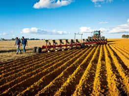 seeding your crops in WA
